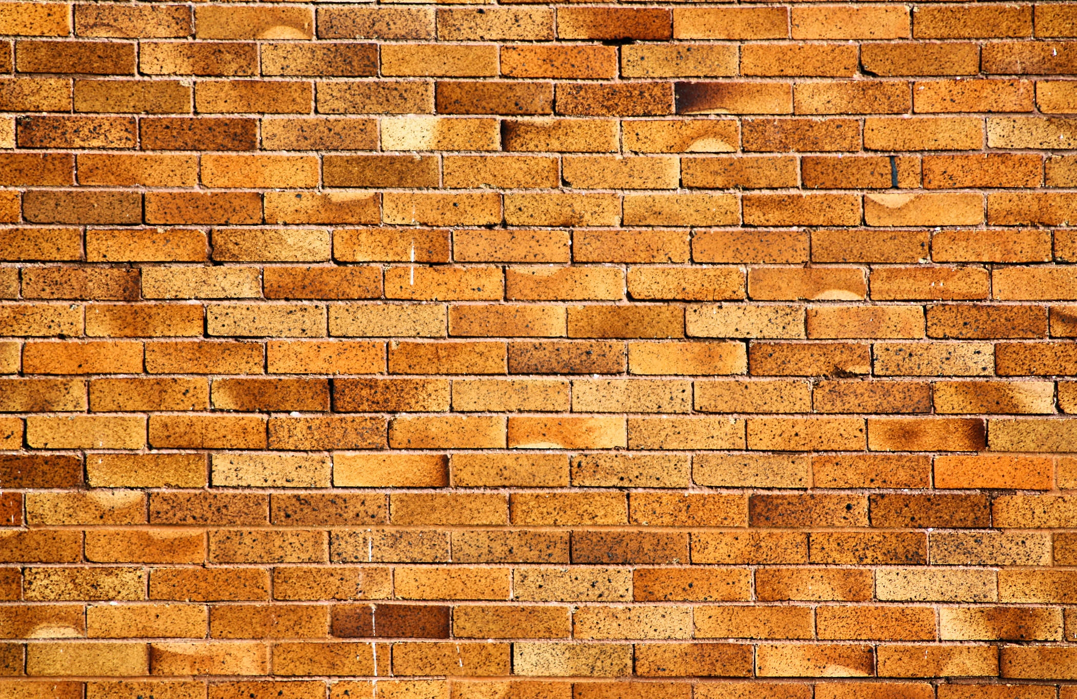 35 brick wall backgrounds images pictures freecreatives for Wallpaper for walls