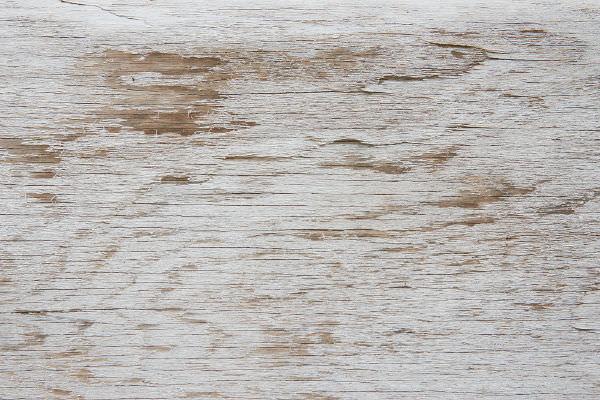 Texture Wood White Free : 25+ White Wood Textures FreeCreatives