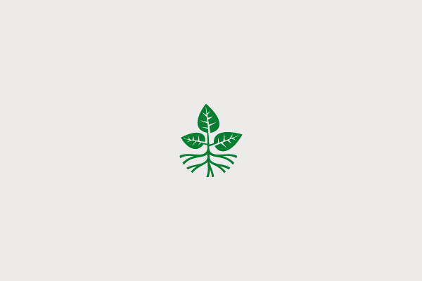21 plant logo designs for inspiration freecreatives for Design lago
