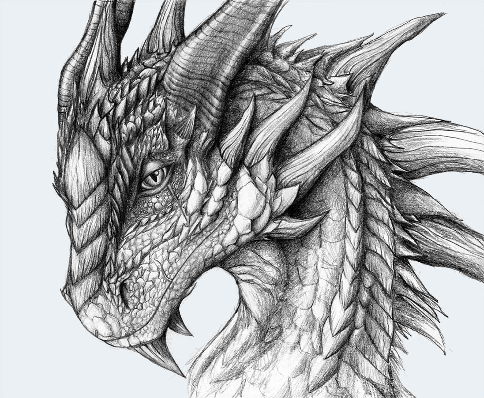 21 realistic dragon drawings free premium creatives for Pictures of awesome drawings