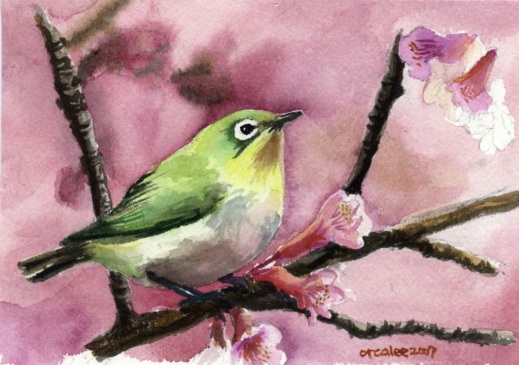 Bird_watercolor_by_orcalee