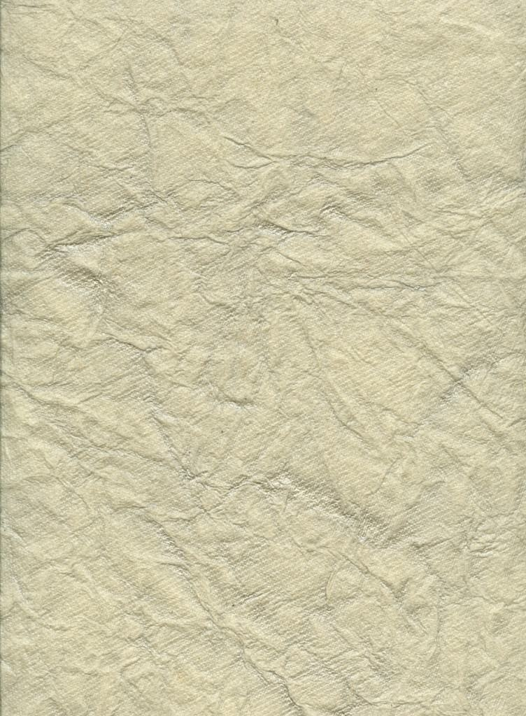 crinkled_paper_texture_by_chokingonstatic