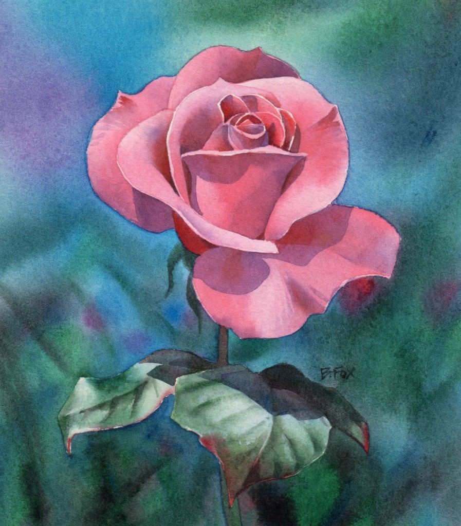 rose water colour paintings