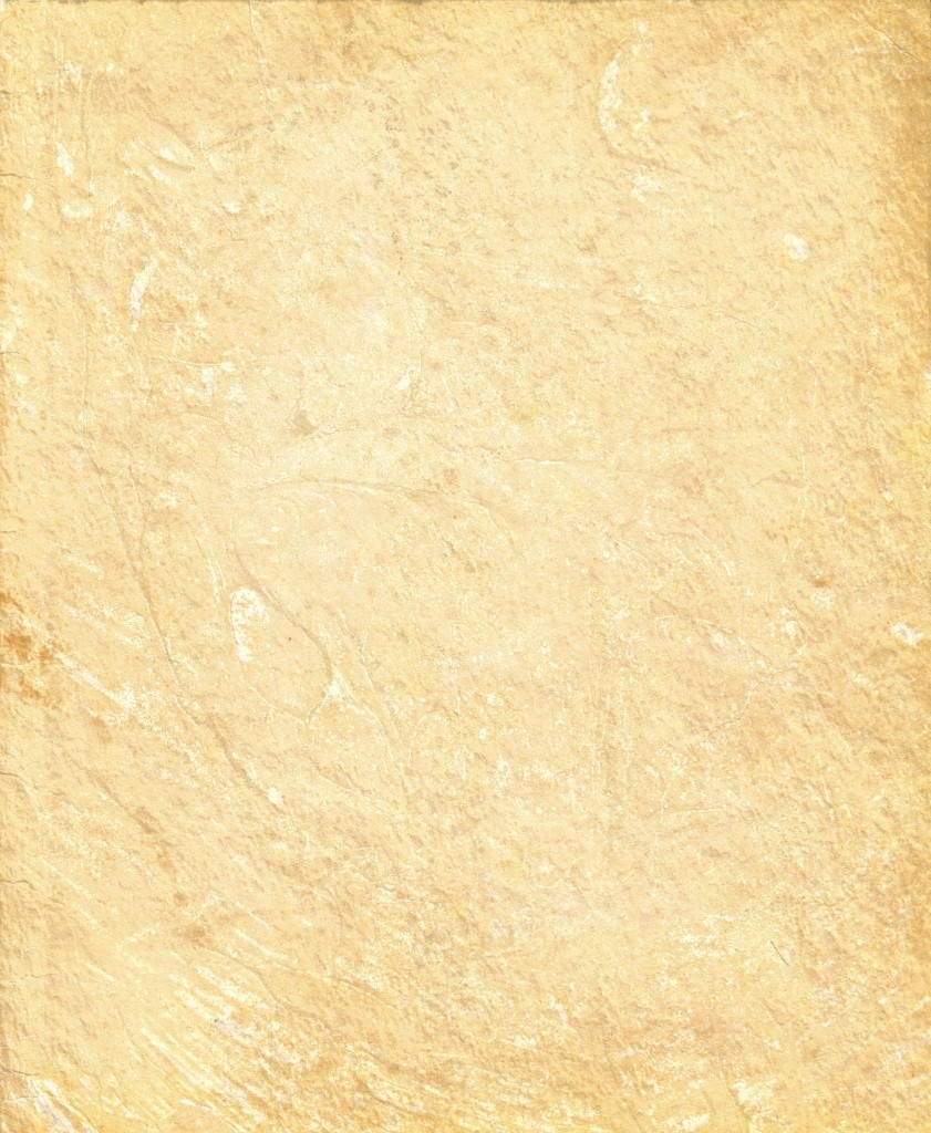 paper_texture_by_akinna_stock