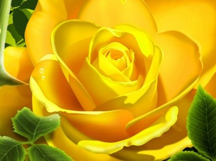 3d_yellow_rose_wallpaper_3d_models_3d_wallpaper_57