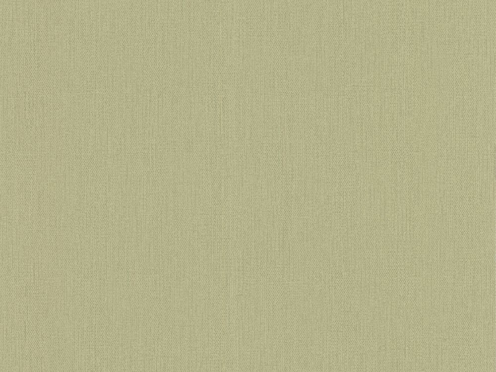 free-delivery-on-roccoco-textured-green-pale-plain-wallpaper-wallpaper-free-plain-textured-delivery-roccoco-green-pale-roccoco-textured-green--pale-green-wallpaper_1320754506