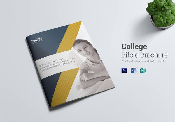 Sample College Brochure Design