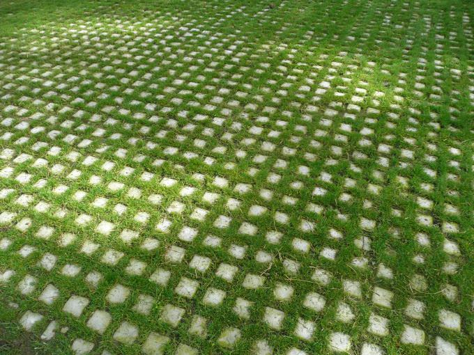 Free 15 Grass Pavement Texture Designs In Psd Vector Eps