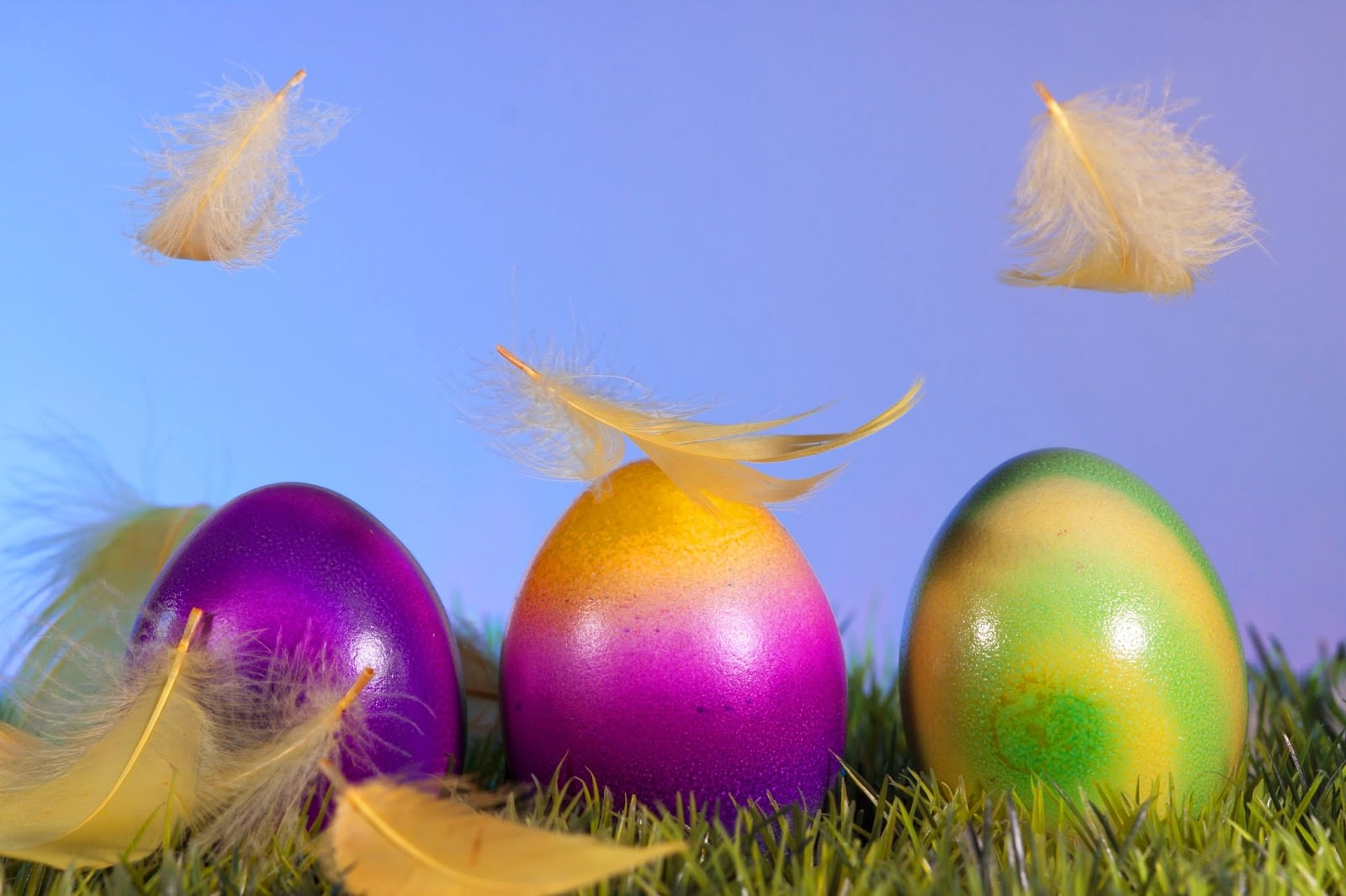 easter-2014-2015-eggs-and-feathers-HD-Backgrounds