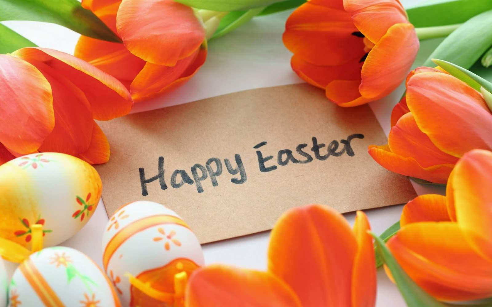 easter-cute-hd-wallpapers-2015