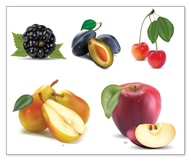 fruits-vector-clipart