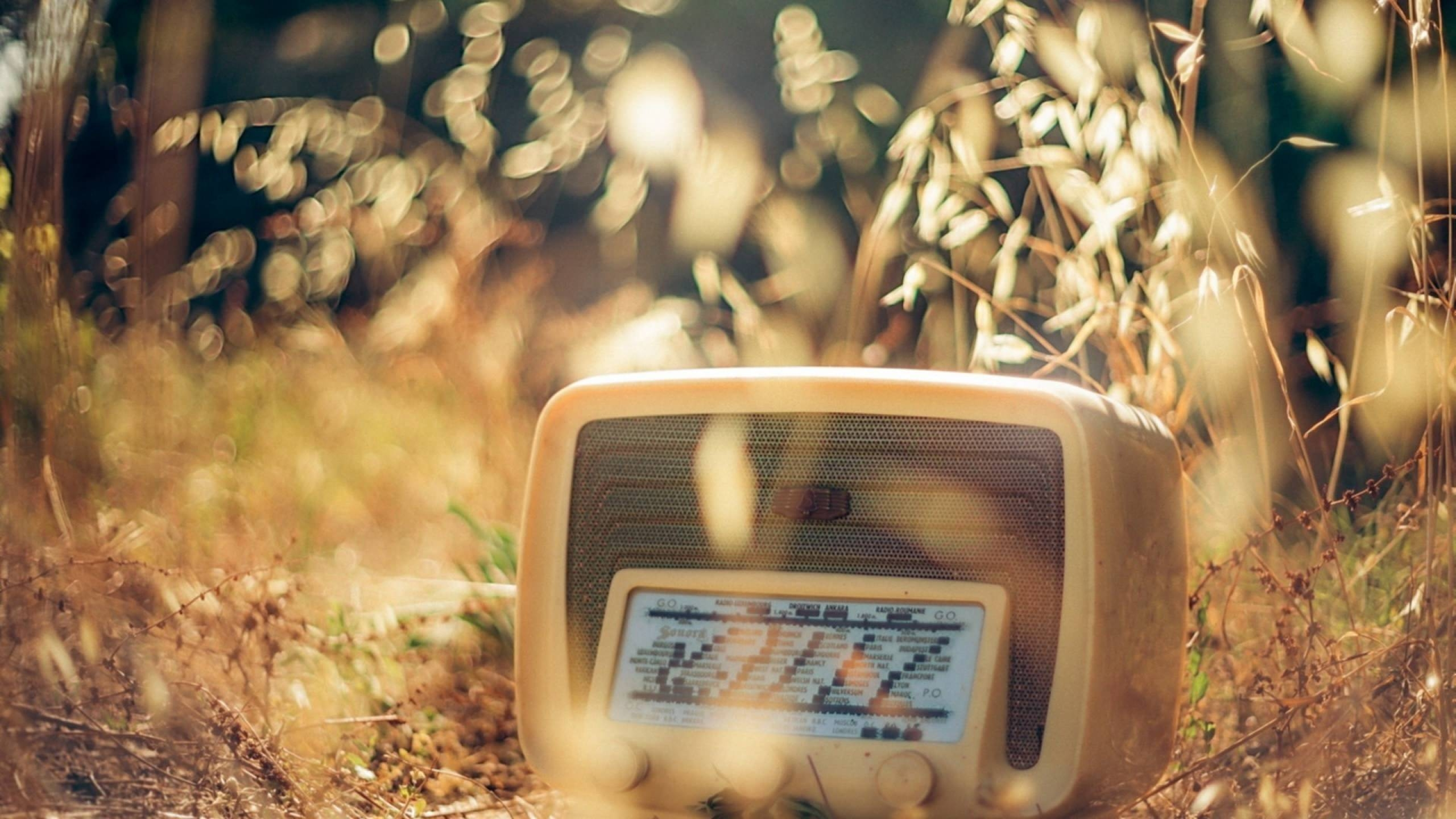 light_nature_vintage_radio_bokeh_photographers_Wallpaper_2560x1440_www.wallpaperwind.com