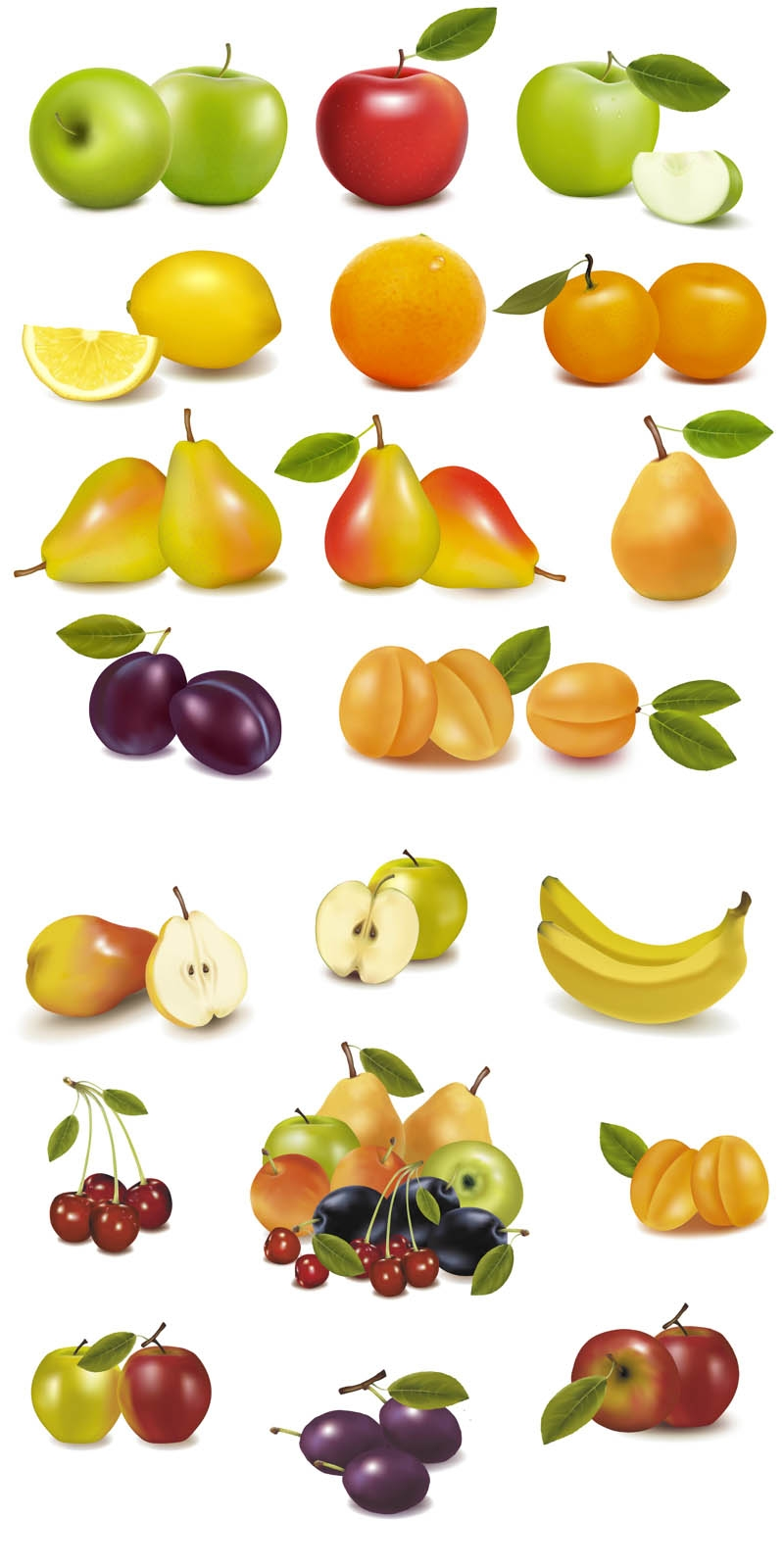vector-fruits-set