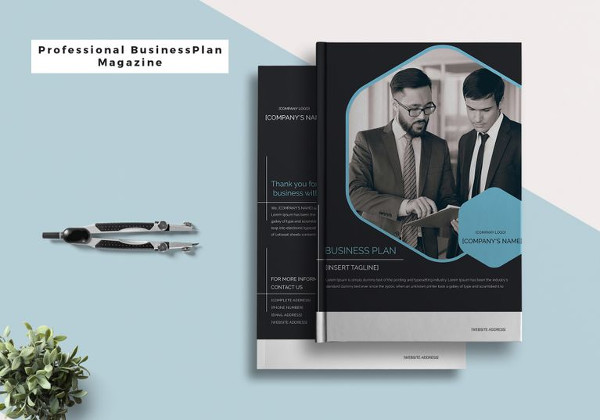 Professional Business Plan Magazine Template