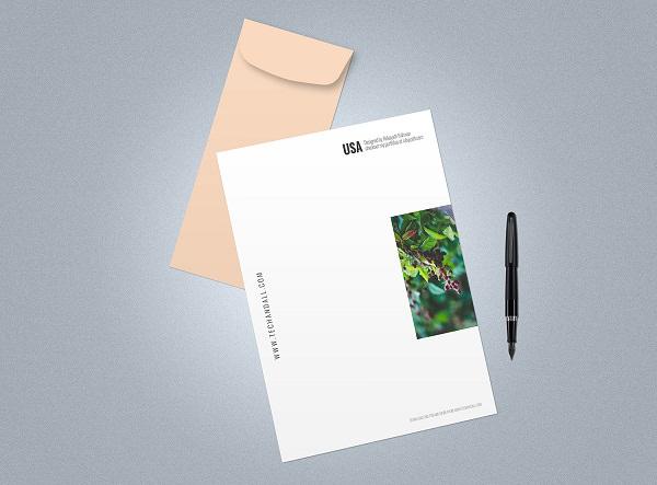 Free Letter Envelope Mockup PSD