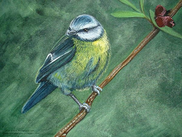 acrylic_bird-painting