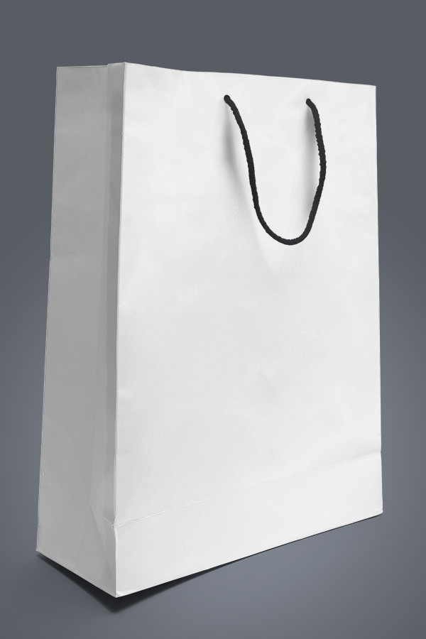 Free Paper Bag Design Template