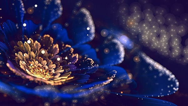 Wallpaper-Art-Fractal-Flower-Petals-Pollen-Bokeh