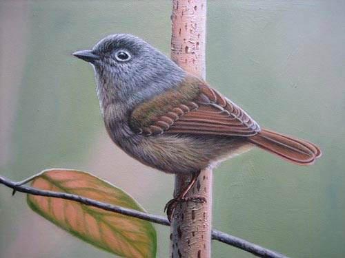 chirping-bird-painting