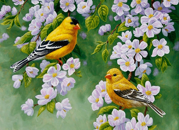 elegant-bird-painting