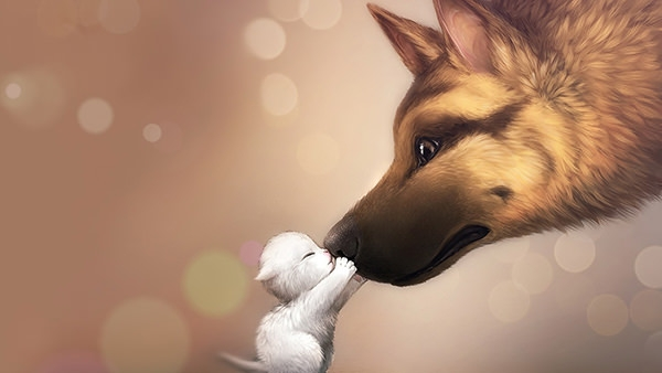 love-animated-cute-dog-wallpaper-full-screen-high-resolution-pictures-free-for-desktop-background