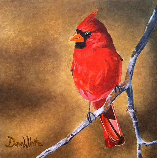 red-cardinal-bird-painting