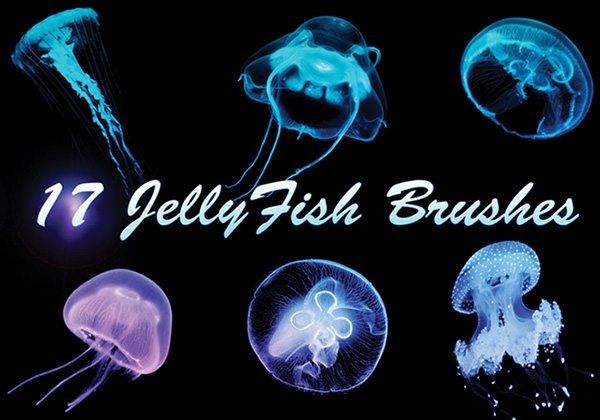 17-large-jellyfish-brushes