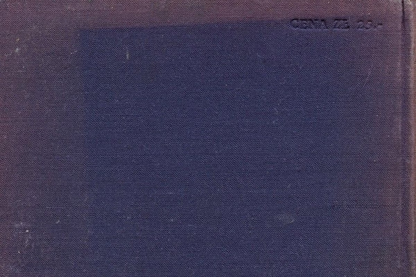 blue_book_cover_texture