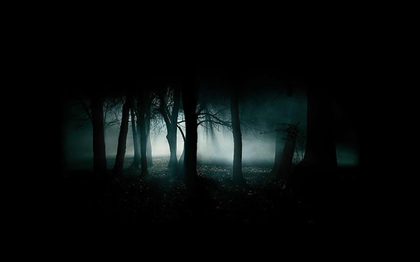 dark creepy forest background