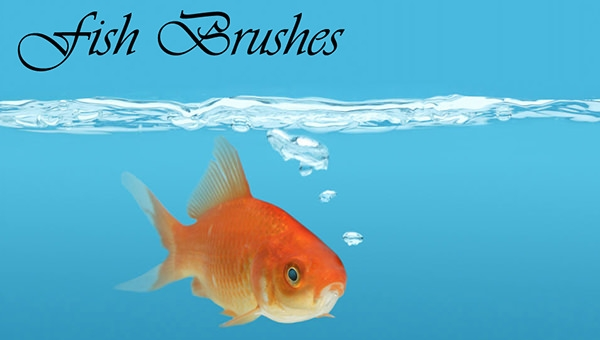 fish_brushes
