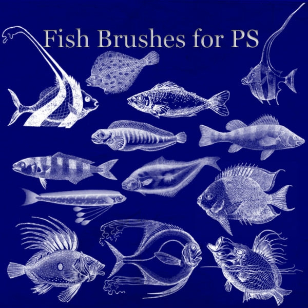 250 Free Photoshop Fish Brushes Freecreatives