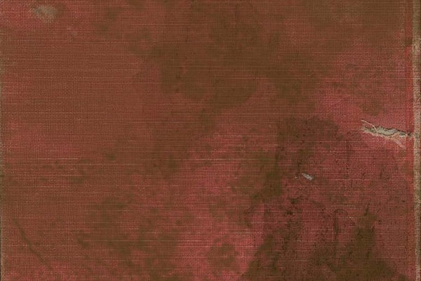 grunge_red_cloth_book texture