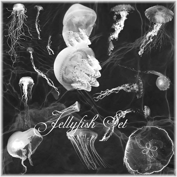 jellyfish_brushes_set