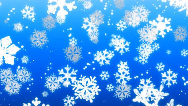 winter_snow_brushes