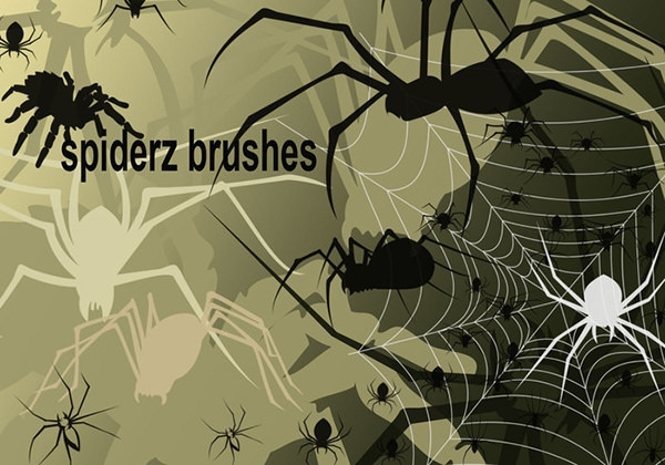 11spiders-brushes and 2 Spider web brushes