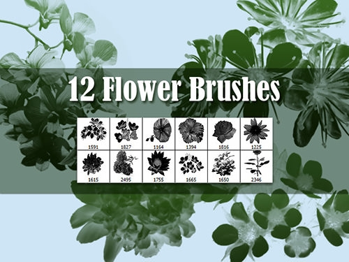 12_flowers_brushes