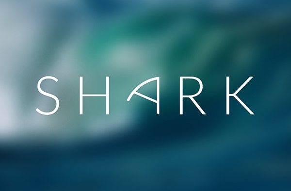 beautiful shark-logo-design