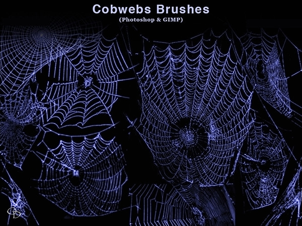 cobwebs_photoshop Spider brushes