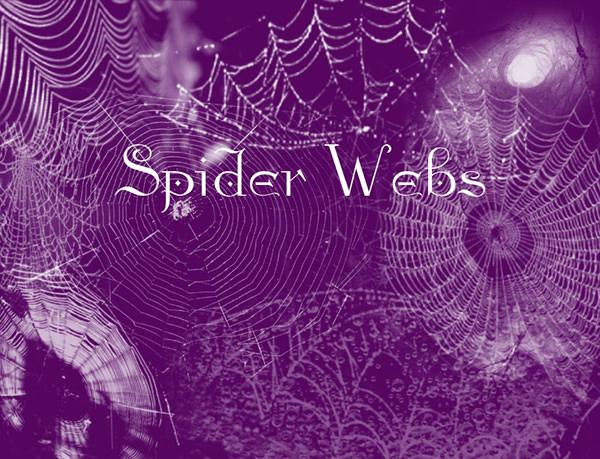 free spider_webs_brushe