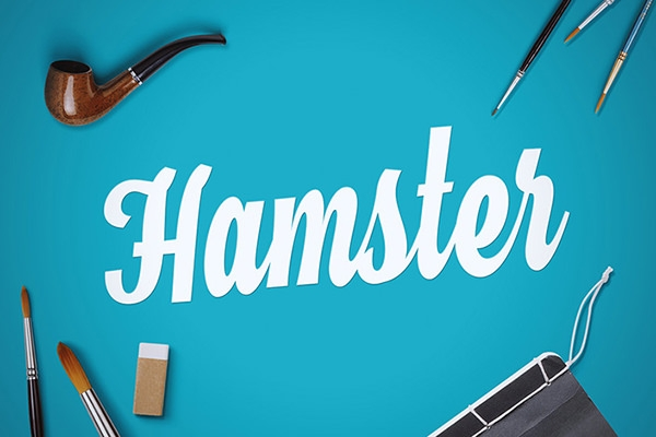 hamster-script-font