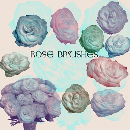 rose-flower_brushes