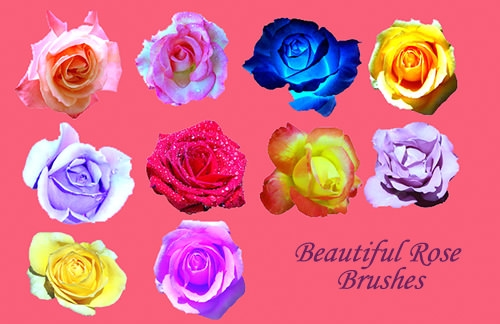 rose-photoshop-brushes-pack