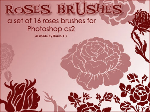 rose_brushes-set