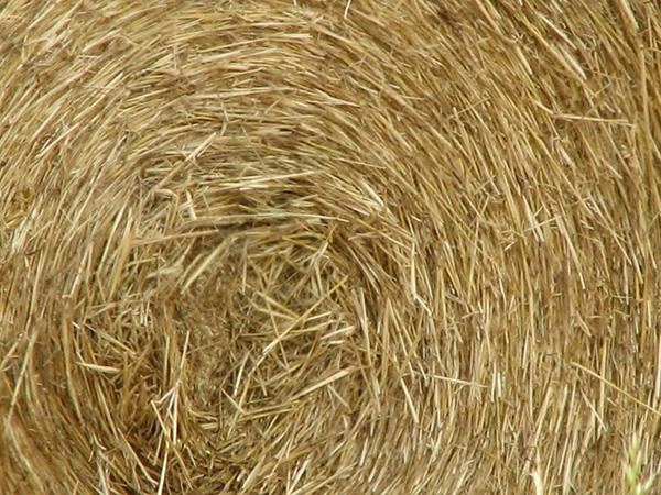 bale of hay texture