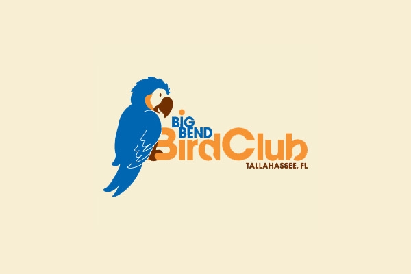 Big Bend Club Logo Design