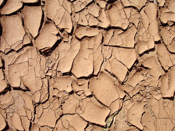 Cracked Red Clay Mud Texture