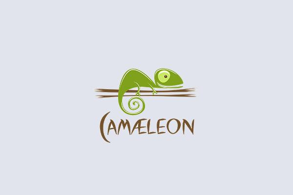 Creative Chameleon Logo Design