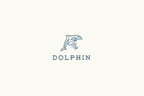creative dolphin logo