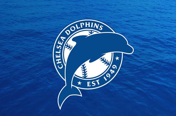 Dolphins Baseball Roundel Logo
