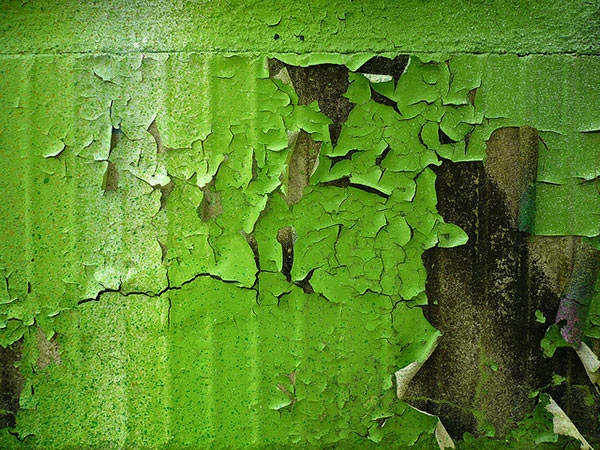 Green Wall Free Photoshop Paint Texture